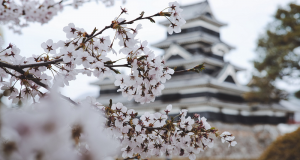 Facts About Japan You Should Know Before Travel