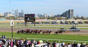 From Frog Racing To Irish Pubs — A Guide To Melbourne Cup Day In Darwin